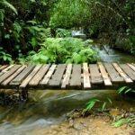 Bruggetjes of brug bouwen? Dit kan jij zelf ook!