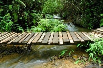 Can I Build A Bridge Over A Stream