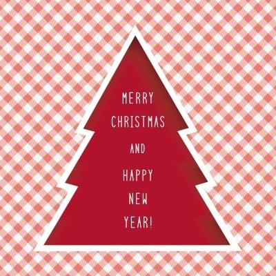 Bouwtekening Kerstboom Steigerhout.Steigerhouten Kerstboom Maken Hoe Doe Je Dat Klik Hier