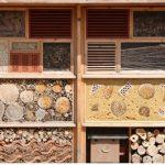 Hoe kan ik een insectenhotel maken?