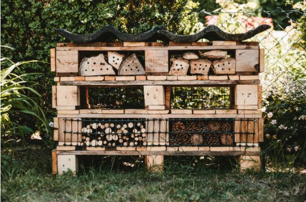 insectenhotel maken